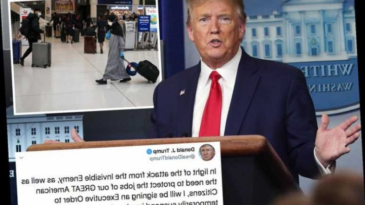Trump tweets that he'll stop ALL immigration to the US to fight coronavirus & 'protect jobs' – The Sun
