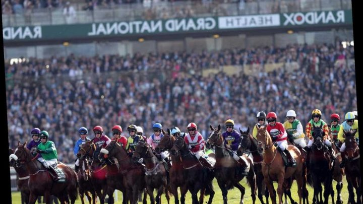 Virtual Grand National to make NHS 'big winner' by donating all profits to organisation's charities