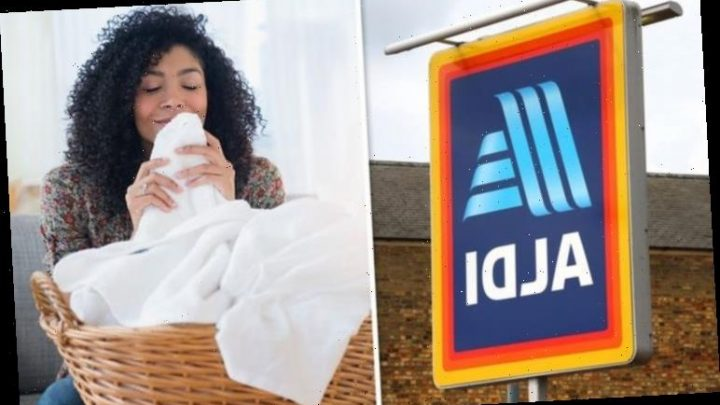 Aldi scores hat trick with three budget cleaning products named Which? Best Buys