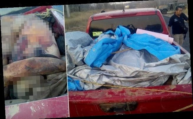 Cartel 'exacts revenge and abandoned 12 burned bodies' on stolen truck