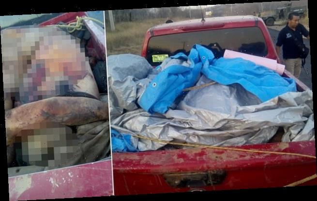 Cartel 'exacts revenge and abandoned 12 burned bodies' on stolen truck