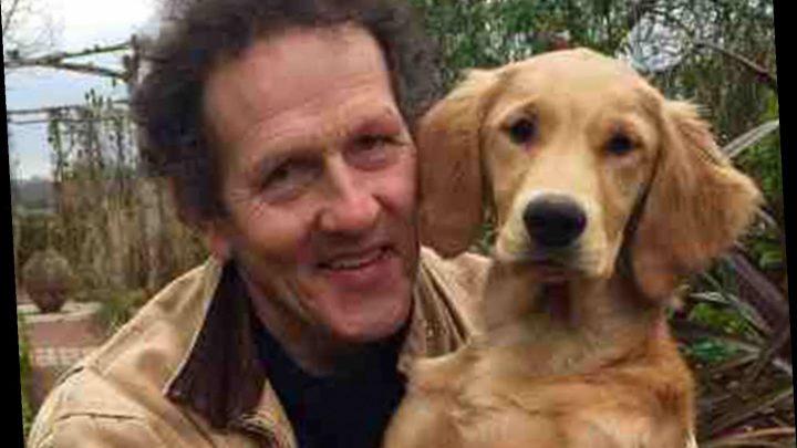 TV gardening host Monty Don's doggy co-star Nigel dies after sudden illness – The Sun