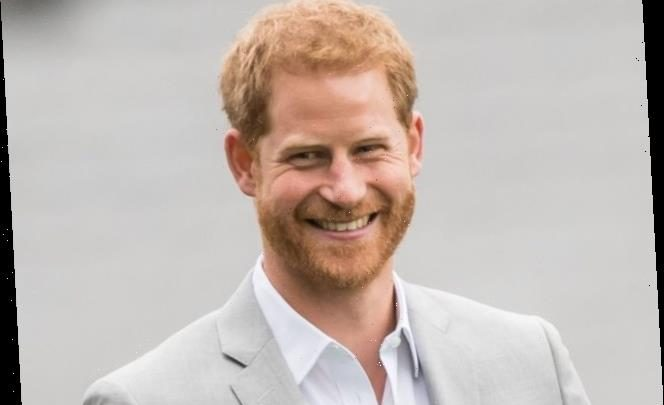 Like Princess Diana, Prince Harry's Relationship With the Public Will Change Royal Family Protocol Forever