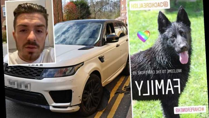 Jack Grealish latest footballer to get £25k guard dog as Aston Villa star gets protection after Dele Alli's home raided – The Sun