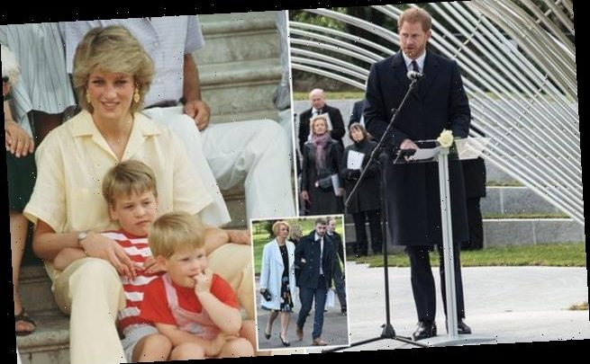 Prince Harry opens up over death of mum  Princess Diana