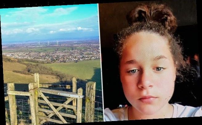 Girl, 11, goes missing 'in the company of a teenage boy' in Sussex