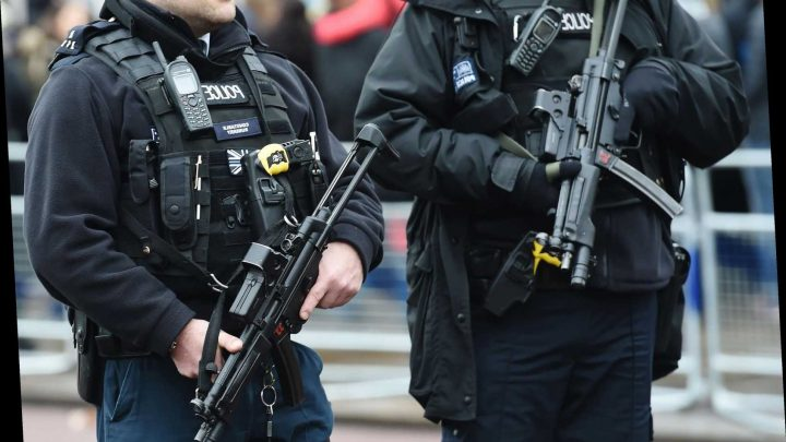 Boy, 14, to appear in court after 'preparing to carry out terrorist attack'
