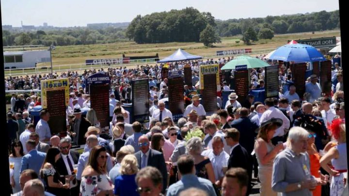 Newcastle Races: Tips, racecards and betting preview as racing returns at Newcastle TODAY – The Sun