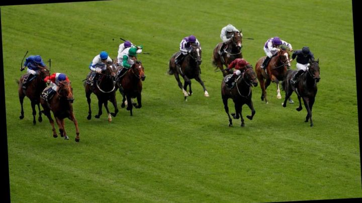 1.15 Royal Ascot racecard and tips: Who should I bet on in the Palace Of Holyroodhouse Handicap?