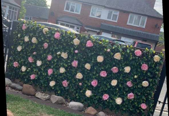 Woman makes a stunning flower wall using faux bouquets from Home Bargains & people are desperate to copy her idea