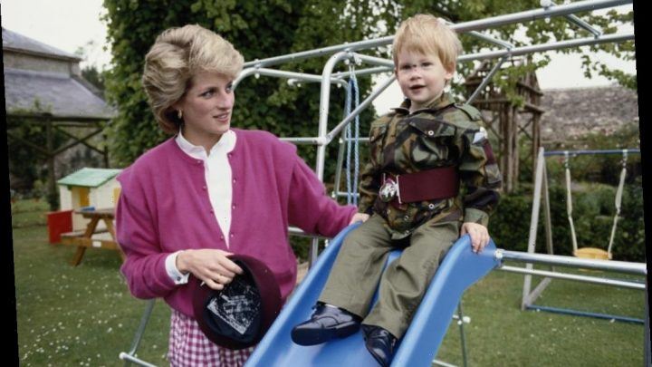Prince Harry's Plan to Leave the Royal Family Started Right After His Mother's Death