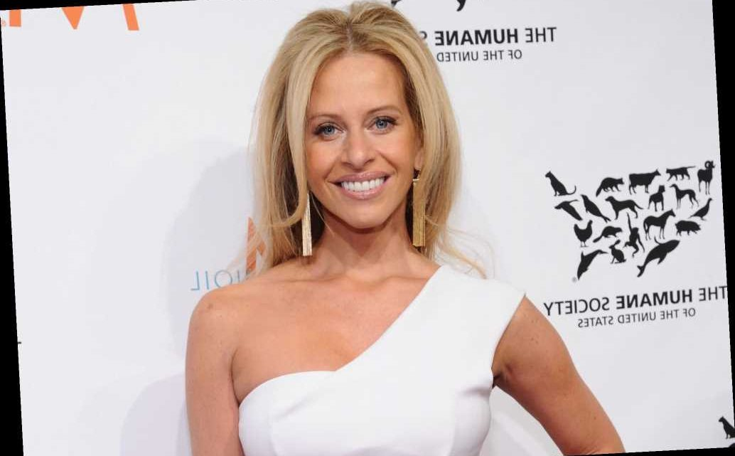 Ex-hubby of 'RHONJ's' Dina Manzo hired hitman to attack her now-husband