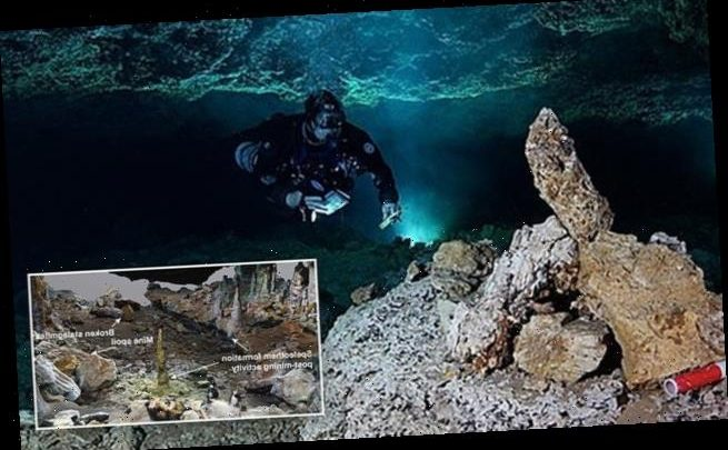 Scientists find America's first mines with 13,000 year-old skeletons