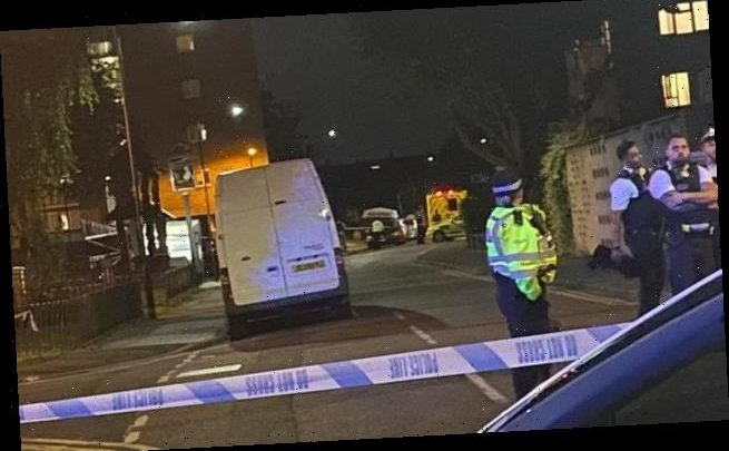 Man in his 20s is shot dead in a north London housing estate