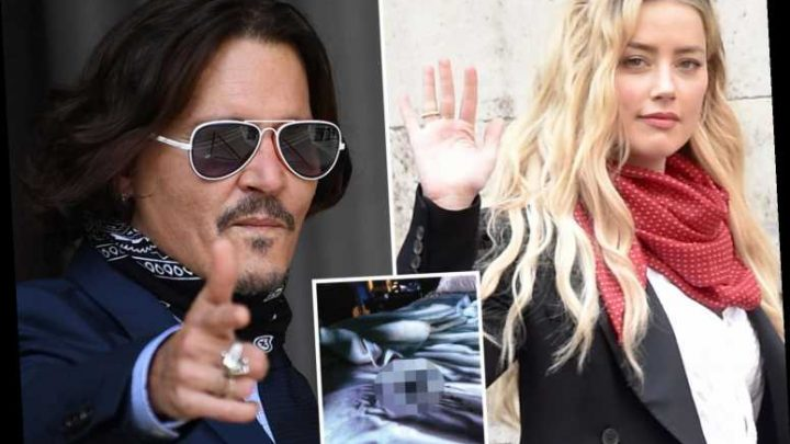 Shocking picture of 'Amber Heard's poo' in bed that led to Johnny Depp divorce