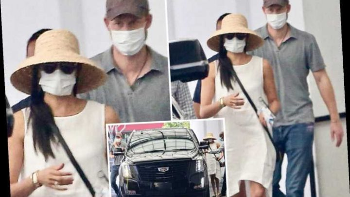 Prince Harry and Meghan Markle (and their bodyguards…) spotted wearing COVID masks in Beverly Hills – The Sun
