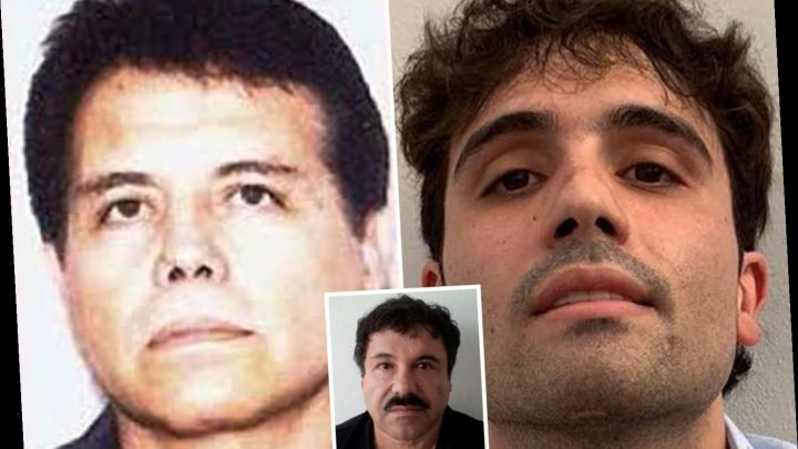 El Chapo's bloodthirsty sons wage brutal war to seize dad's narco kingdom from his old business partner