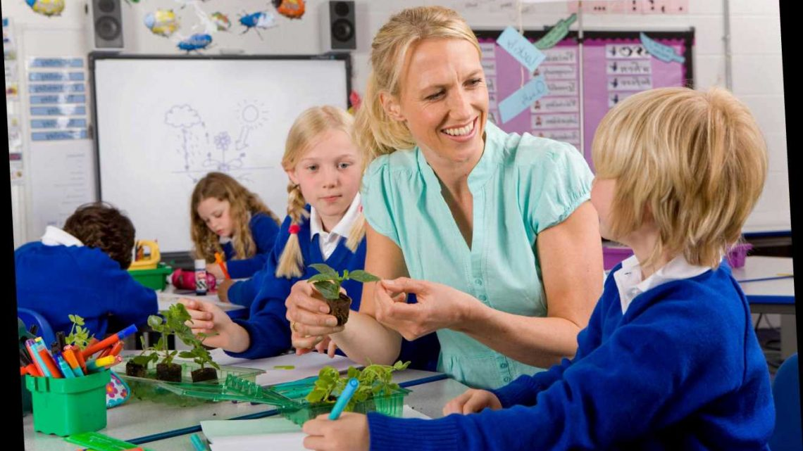 Teachers should get public sector pay rise – but only if they turned up to school during Covid crisis, say angry parents