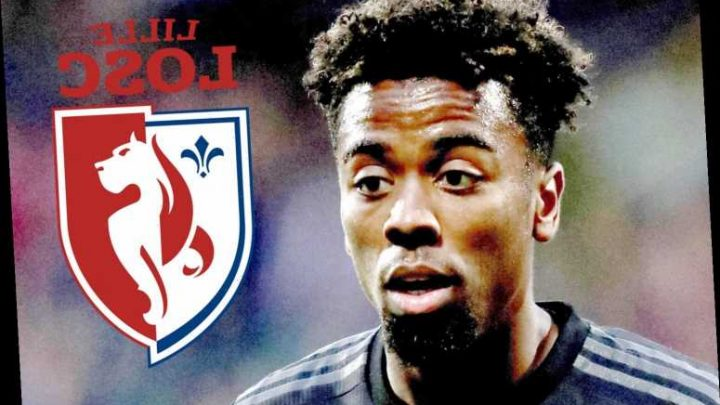 Ex-Man Utd star Angel Gomes handed career lifeline by Lille with 19-year-old replacement for Victor Osimhen