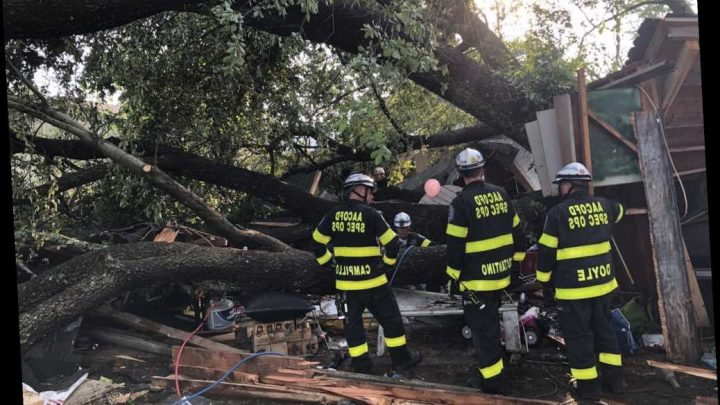 At Least 21 People Injured After Tree Falls on Maryland Garage During Child's Birthday Party