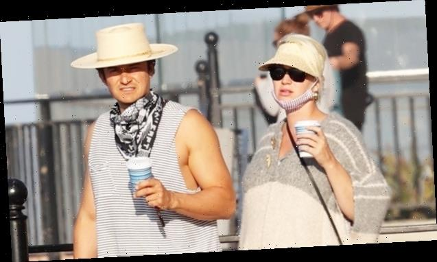 Pregnant Katy Perry Takes Her Adorable Bump Out With Orlando Bloom For Romantic Walk On Beach