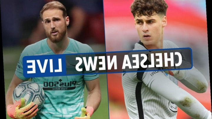 7am Chelsea transfer news LIVE: Kai Havertz transfer LATEST, Hakim Ziyech spotted at Norwich game, Kante injury update – The Sun