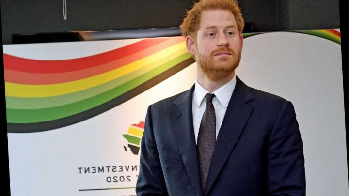 Longtime Royal photographer says Prince Harry 'has simply lost the plot'