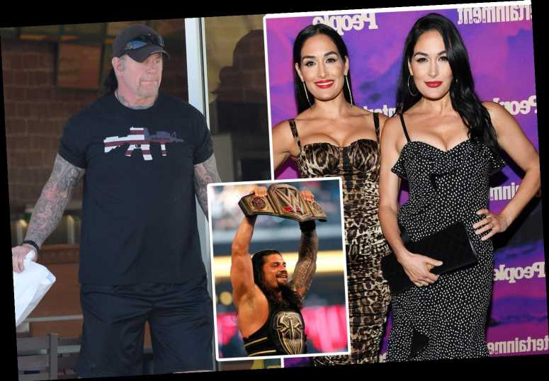 WWE stars jobs before they were famous, including The Undertaker as a debt collector and John Cena as a limo driver