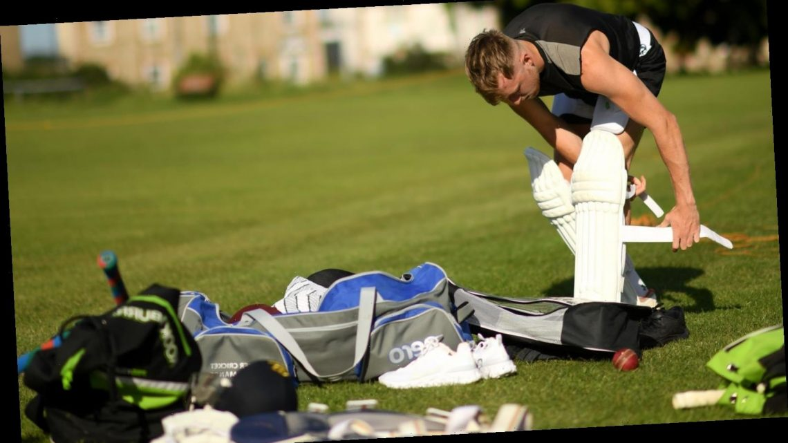 Recreational cricket given government's green light to return