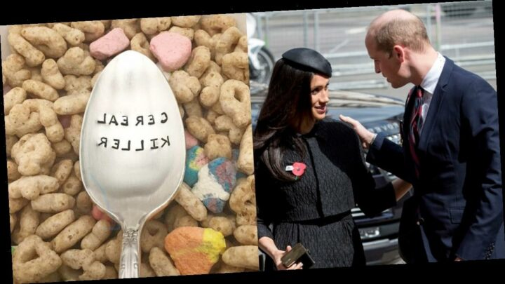 Meghan Markle Once Gave Prince William This Gag Gift, and We Need to Know the Meaning Behind It