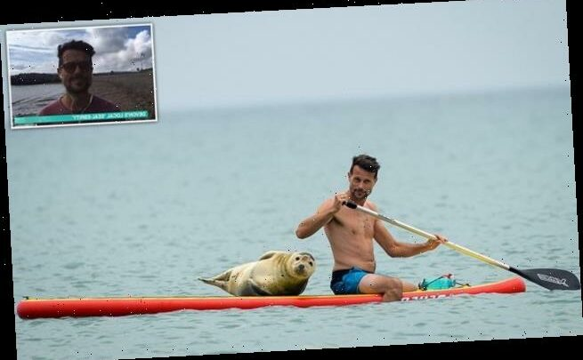 Devon local says seal hitched ride on his paddle board for FOUR hours