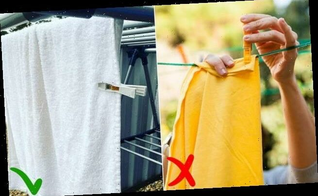 Mum sparks debate over 'correct' way to hang washing on the line