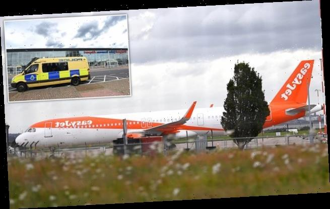EasyJet plane makes emergency return after mid-air bird strike