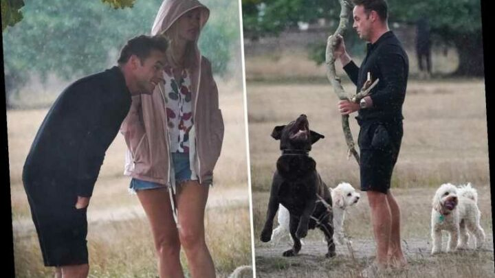 Ant McPartlin and girlfriend Anne-Marie run for cover as they're caught in a rainstorm while walking their dogs