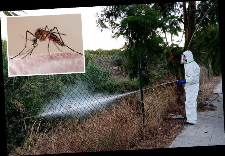 Brit tourists in Spain on alert for killer West Nile virus as disease spreads to 45 people after killing two