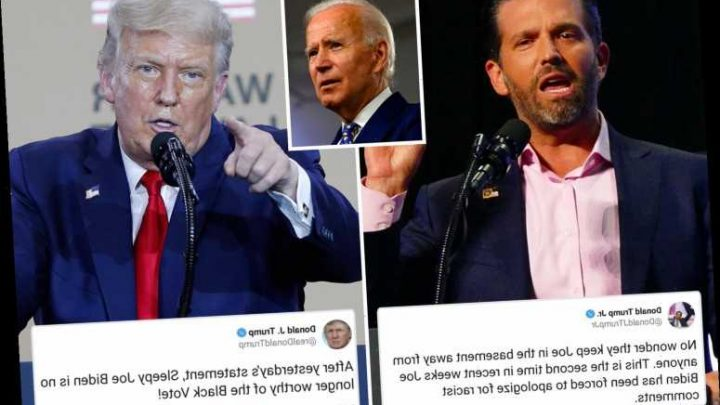Don Trump Jr. slams Biden for 'having to apologize for racist comments' AGAIN after latest embarrassing gaffe
