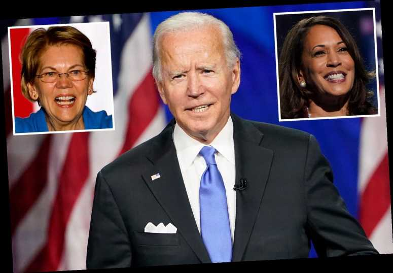 Can the US really elect 'Sleepy' Joe Biden, a 77-year-old barely trusted to appear in public?