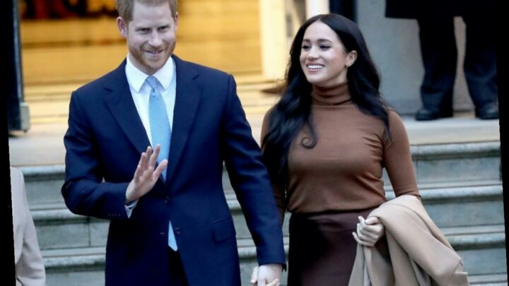Meghan Markle and Prince Harry's 'Fingerprints' Are All Over 'Finding Freedom', Royal Expert Says