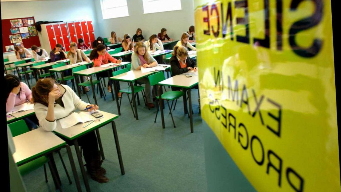 Pupils face exam 'life sentence' if not allowed to appeal incorrect grades after coronavirus pandemic, warn teachers