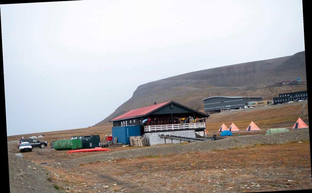Dutch man killed by polar bear on Norway's Svalbard Islands
