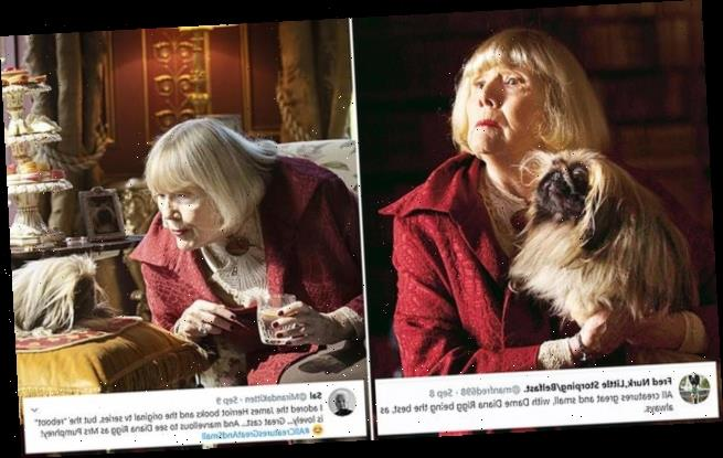 Diana Rigg wowed viewers in All Creatures Great and Small this week