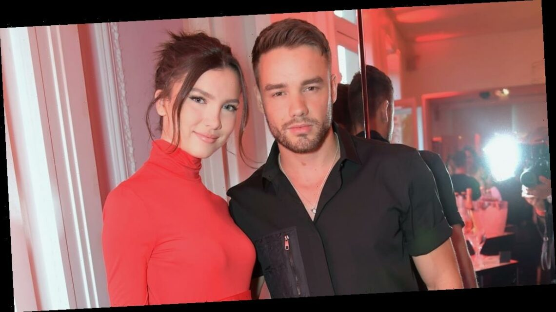Everything We Know About Liam Payne's Love Life, From Maya Henry to Naomi Campbell