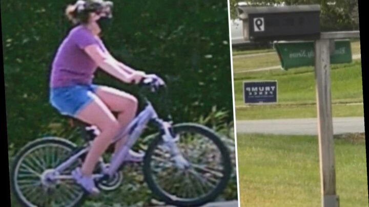 Hunt for woman dumping DOG POOP in mailboxes of Trump supporters and defacing MAGA signs