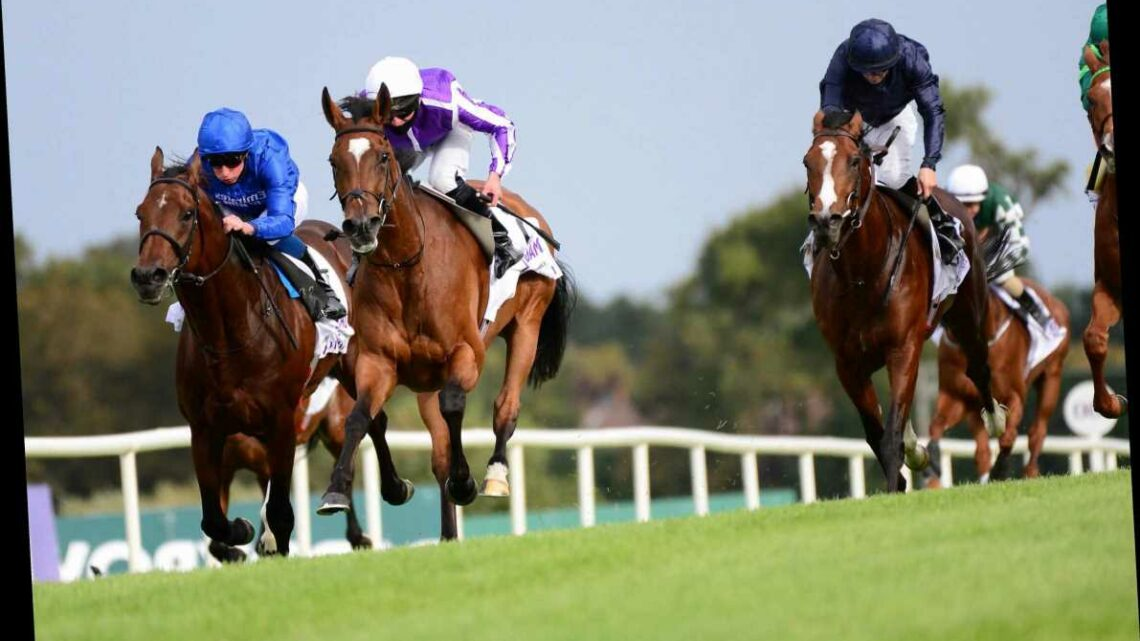 Magical pulls a rabbit out of a hat to beat world's top-rated horse Ghaiyyath in Irish Champion Stakes