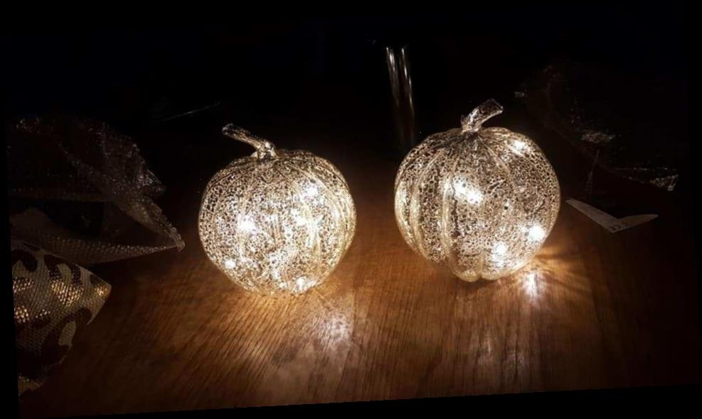 Poundland is selling light-up glass pumpkins and people are snapping them up for Halloween