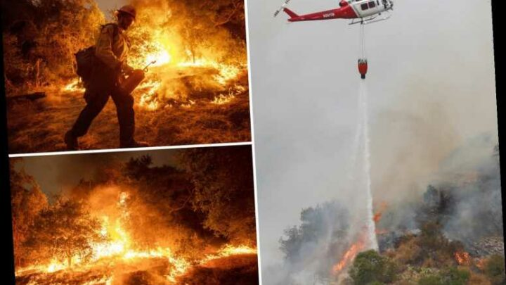 California wildfires spark terrifying 'firenados' as blazes kill 35 and devastate 3million acres forcing 500,000 to flee