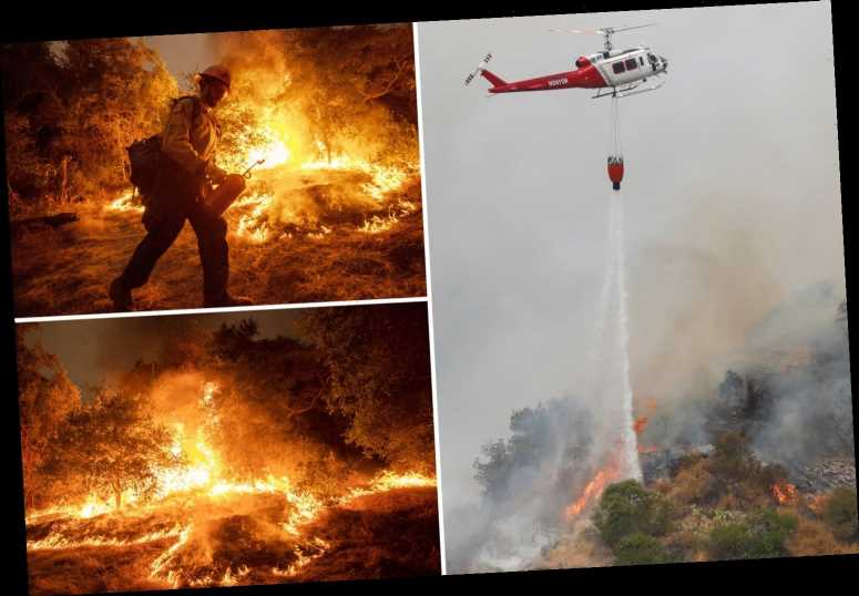 California wildfires spark terrifying 'firenados' as blazes kill 35 and devastate 3million acres forcing 500,000 to flee