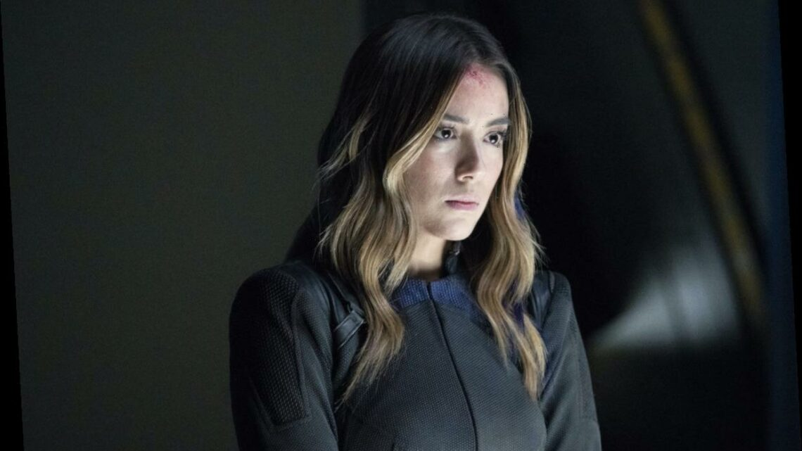 'Agents of SHIELD' Has Always Been Canon Thanks to the Quantum Realm