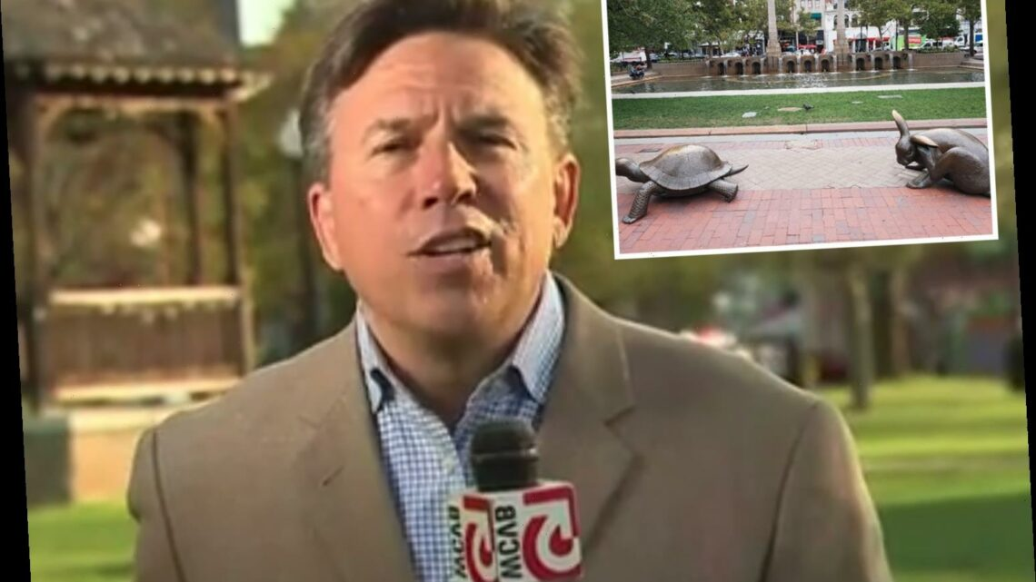Boston TV reporter Ted Wayman 'stabbed with scissors while working on story in unprovoked attack'