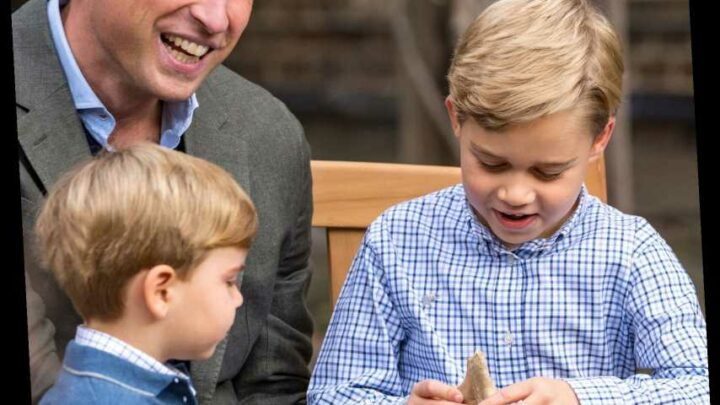 Why Is Prince George's Gifted Shark Tooth Fossil Causing a Stir?